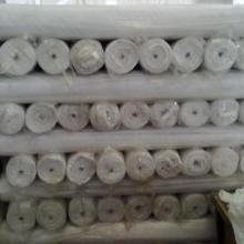 长兴金顺纺织有限公司供应磨毛布白坯定型布化纤坯布春亚纺桃皮绒图片