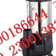 220V单相排污泵图片