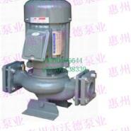 源立YLGB65-20管道泵图片