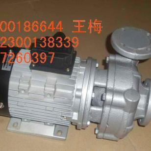 广州元新高温油泵图片