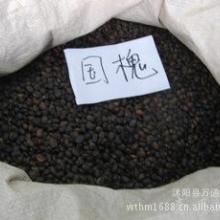供应国槐种子 槐树种子 国槐树种子 国槐树种子 净种