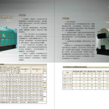 供应CDZL常压热水锅炉13526223999