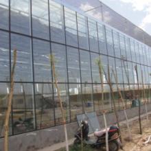 供应安徽合肥玻璃温室大棚建设,安徽玻璃温室建设,安徽温室建设,安徽大棚建设