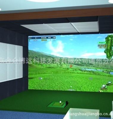 高尔夫球杆图片/高尔夫球杆样板图 (4)