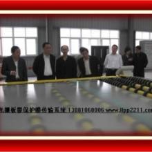 供应立体画光栅板 立体光栅片 立体光栅膜 立体画 上饶三维立体画光栅板3d立体软件批发