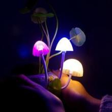 供应阿凡达蘑菇灯陶瓷树脂创意小夜灯批发