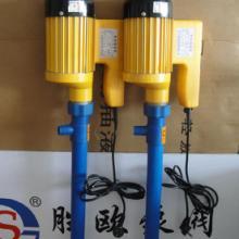 供应上海胜欧牌SB-9工程塑料化工桶泵,塑料插桶泵