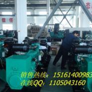 安徽界首100千瓦发电机组图片
