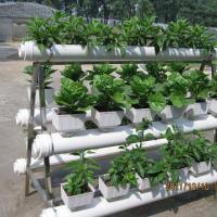 无土栽培阳台种菜设备设施