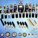 电线电缆网图片