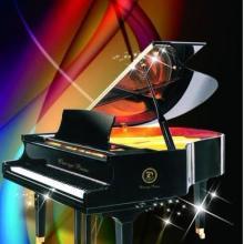 供应钢琴自动演奏系统VS8图片