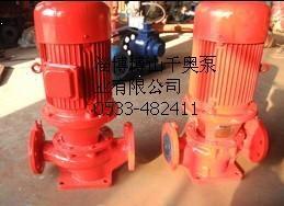 ISG立式单级消防泵图片/ISG立式单级消防泵样板图 (3)
