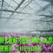 供应包头防雾滴阳光板价格b包头阳光板图片