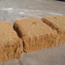 现货供应椰棕丝/椰丝