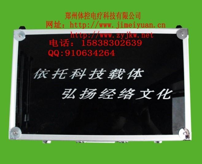 供应双模体控电疗仪ZYJM-11