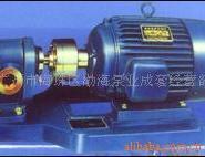 高温齿轮油泵2CY系列高温齿轮泵图片