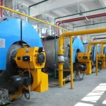 供应山东工业锅炉价格