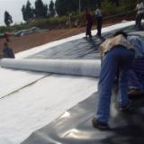 供应防水毯、纳基膨润土防水毯、针刺防水毯