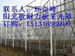 供应12mm阳光板12mm阳光板价格
