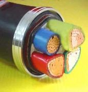 铜芯全塑电缆电缆三加一芯系列图片