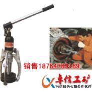 订制DYZ20一体式液压拉优质图片