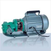 供应WCB齿轮油泵,上海百亨特供应各类齿轮输油泵,求购齿轮泵批发