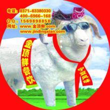供应2015最赚钱餐饮加盟项目胡羊排加盟,牛羊现炒特色加盟,胡羊排烧烤火锅复合餐厅特色加盟