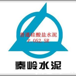 秦岭普通硅酸盐水泥525R图片