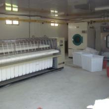 供应专用洗涤机械