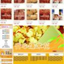 供应飞儿网店设计食品模板标准版