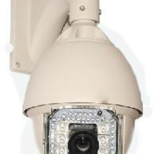 供应远距离红外高速球 ,红外智能球机,摄像机,无线摄像机无线监控批发