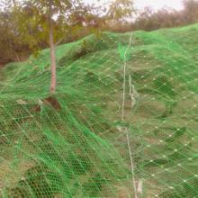 供应自然灾害防护  GPS2型山体滑坡防护网