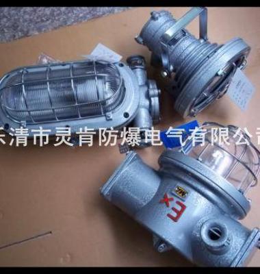 隔爆防水高压钠灯图片/隔爆防水高压钠灯样板图 (3)