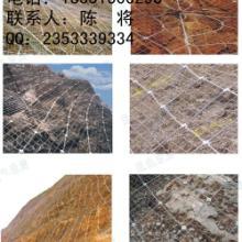 供应各种护栏网规格各种护栏样品13551000298