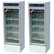 250D型智能光照培养箱图片