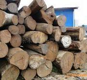 非洲红玫瑰木材进口清关代理