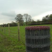 供应牲畜养殖网