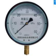 耐震压力表,压力表