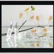 15寸TFT液晶广告机图片