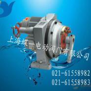 DKJ系列电动装置图片