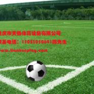 南岸区装饰材料人造草,坪双桥区室外人造草坪,重庆足球场运动人造草坪批发市场最便宜