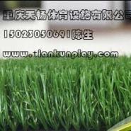 大渡口区景观绿化人造草坪图片