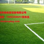 涪陵区运动足球场人造草坪图片