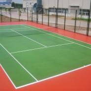 双桥区硅PU羽毛球场图片