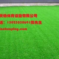 高乐夫球场人造草坪