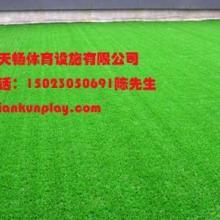供应高乐夫球场人造草坪  _重庆优质安全地垫生产供应出售 _重庆北碚区人造草坪专业厂家铺设图片