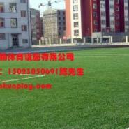 江北区幼儿园塑料人造草坪厂家价格图片