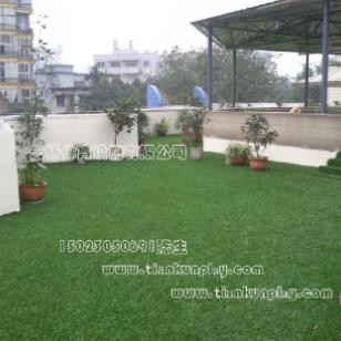 南川区景观绿化人造草坪图片