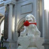 供应嘉祥石雕石狮子北京狮迎宾狮石狮子