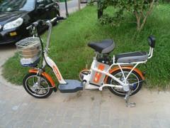 锂电池车电动车自行车龙跃锂动图片
